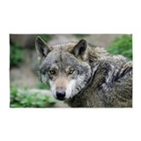 Wolf 3x5 Rugs