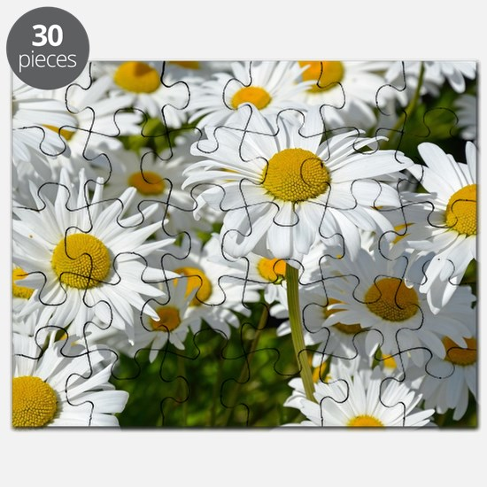 Cute Daisy Puzzle