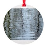 Reflections on the ice Ornament