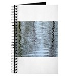 Reflections on the ice Journal