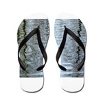 Reflections on the ice Flip Flops