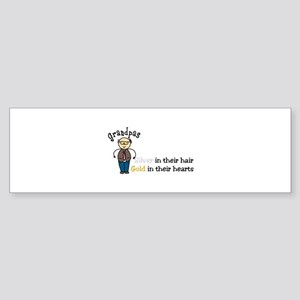 Silver Hair Bumper Sticker