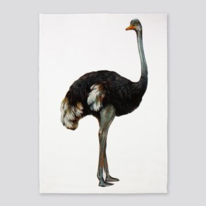 Ostrich 5'x7'area Rug