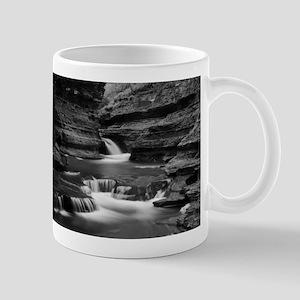 Buttermilk Falls, New York (BW) Mugs