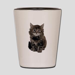 Adorable cute kitty Shot Glass