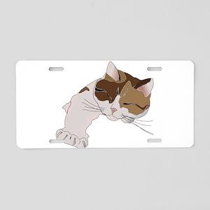 Calico Cat Sleeping Aluminum License Plate