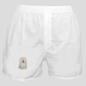 Bolognese #2 Boxer Shorts