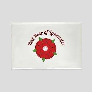 Rose Of Lancaster Magnets