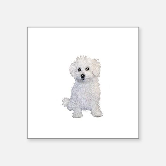 """Bolognese Puppy Square Sticker 3"""" x 3"""""""