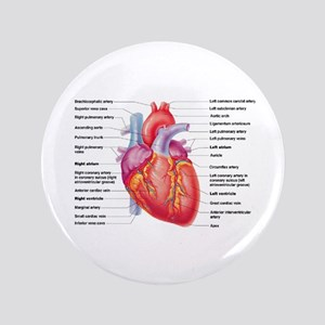 "Human Heart 3.5"" Button"