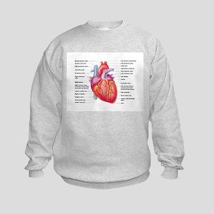Human Heart Sweatshirt