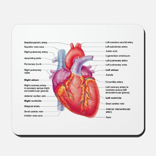 Human Heart Mousepad