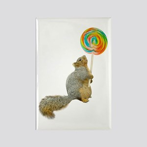 Fat Squirrel Lollipop Rectangle Magnet