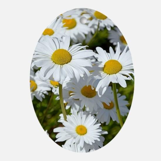 Cute Daisy Oval Ornament