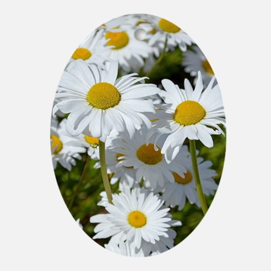 Cute Daisy flower garden Oval Ornament