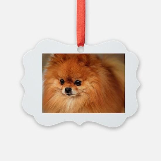 Cute Dog owners Ornament