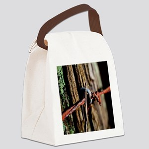 Rusty Old Barbed Wire Canvas Lunch Bag