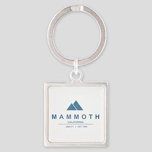 Mammoth Ski Resort California Keychains