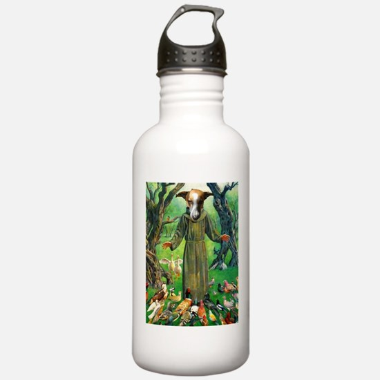 st ladybird of assisi Water Bottle