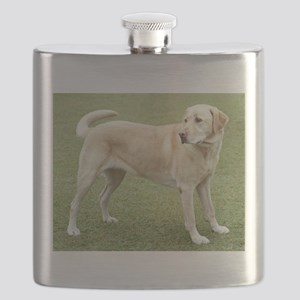 3 full yellow lab Flask