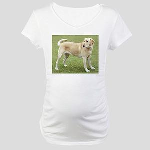 3 full yellow lab Maternity T-Shirt