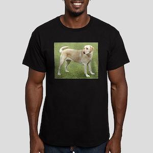 3 full yellow lab T-Shirt