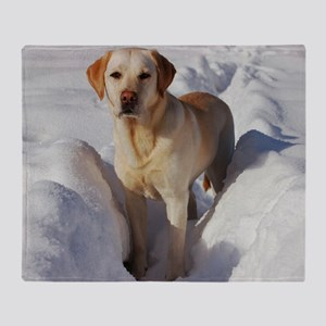 yellow lab in snow Throw Blanket