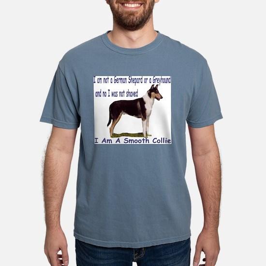 Collie_Place Ash Grey T-Shirt