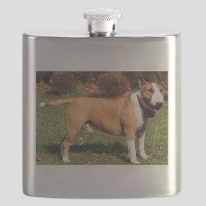 bull terrier 2 full Flask