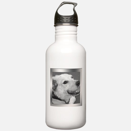 Your Photo in a Silver Frame Water Bottle
