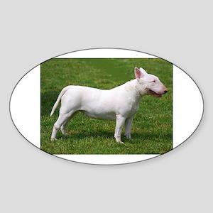 bull terrier 4 full Sticker