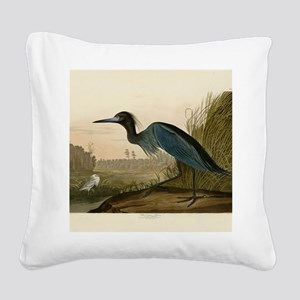 Audubon Blue Crane Heron from Birds of America Squ
