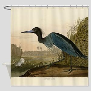Audubon Blue Crane Heron from Birds of America Sho