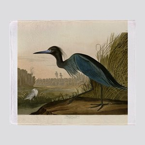 Audubon Blue Crane Heron from Birds of America Thr