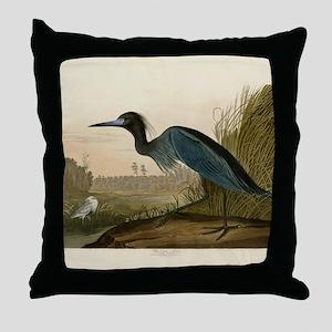 Audubon Blue Crane Heron from Birds of America Thr