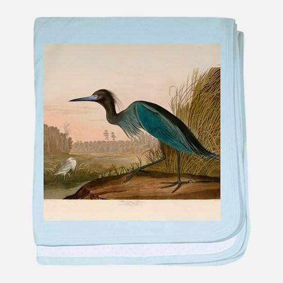 Audubon Blue Crane Heron from Birds of America bab