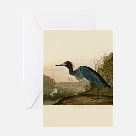 Audubon Blue Crane Heron from Birds of America Gre