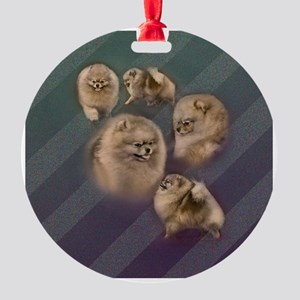 Toy dogs Pomeranian Round Ornament