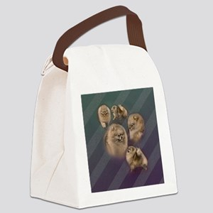 Toy dogs Pomeranian Canvas Lunch Bag