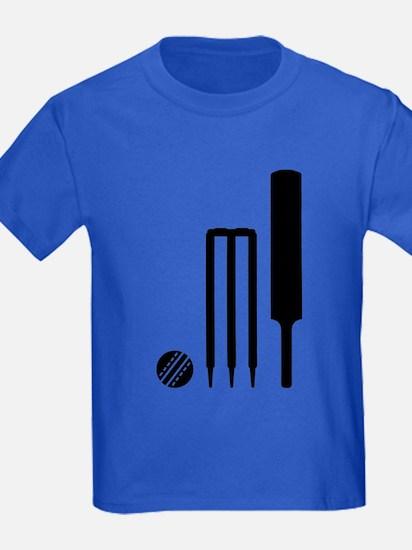 Cricket ball bat stumps T