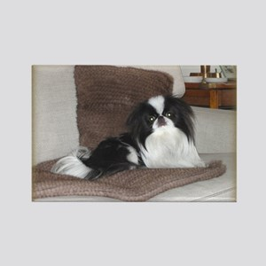 Deluxe Japanese Chin Darling Rectangle Magnet