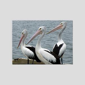 Three Gorgeous Pelicans 5'x7'Area Rug