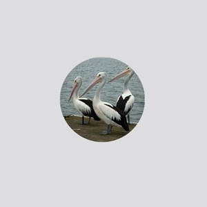 Three Gorgeous Pelicans Mini Button