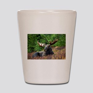Majestic Moose Shot Glass