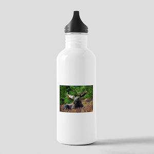 Majestic Moose Water Bottle