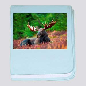 Majestic Moose baby blanket