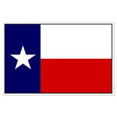 Texas Flag v3 Posters