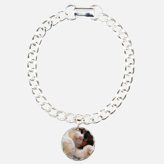 sleeping kitty Bracelet
