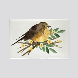 Spring Robin Magnets