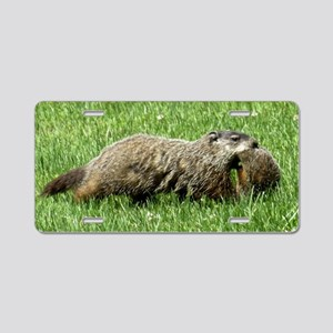 Groundhog and Baby Aluminum License Plate